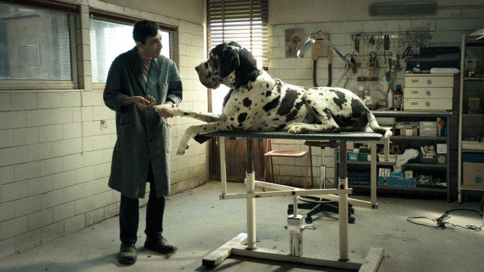 Dogman 5